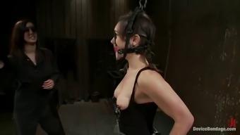 kinky broads engage in bondage