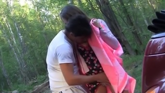 Teens sex in the car on a picnic