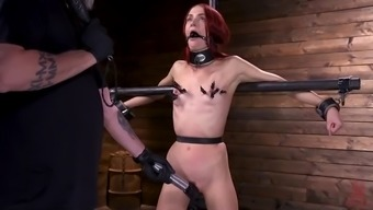 Newcomer takes punishment